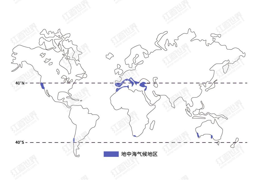 地中海气候只有地中海才有吗?
