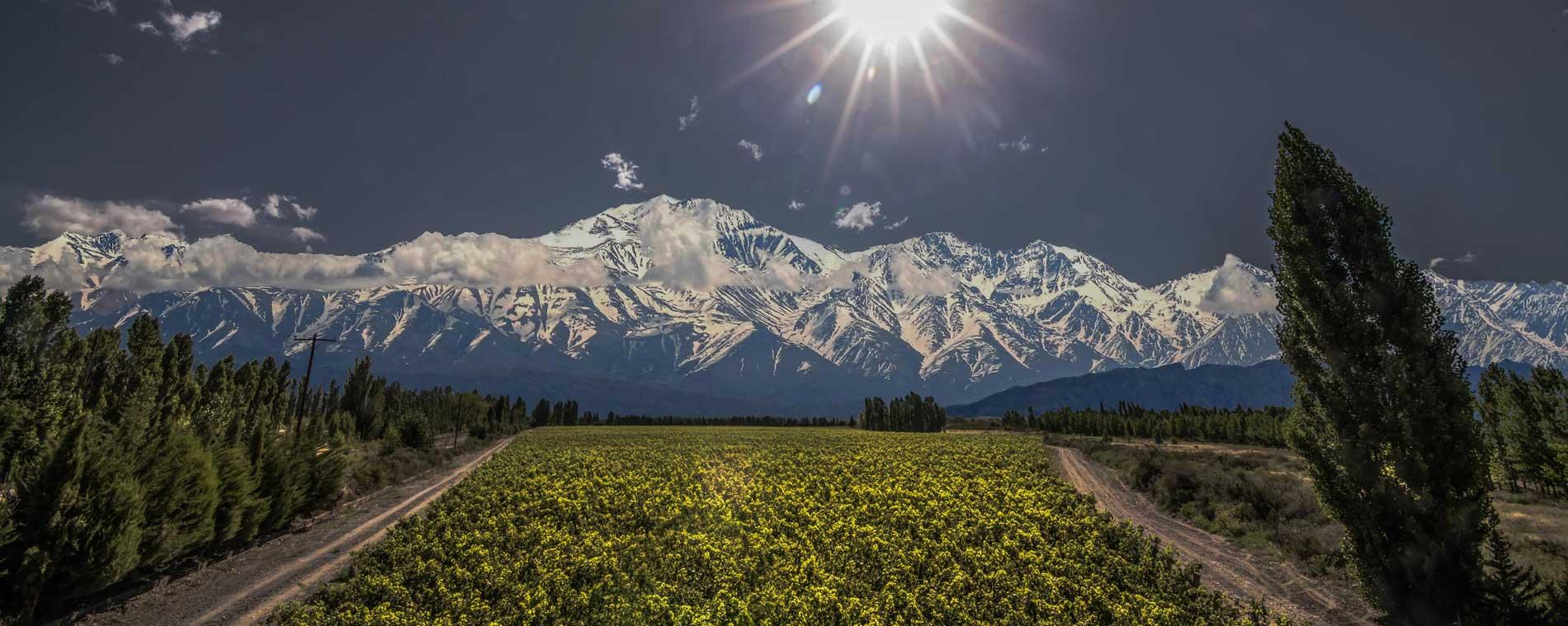 阿根廷高海拔产区一览