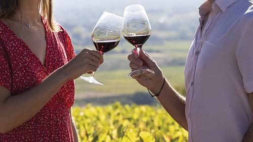 大科普:你还认为博若莱的葡萄酒不能陈年吗?