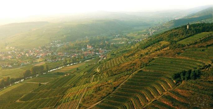 多瑙河哺育的奥地利产区