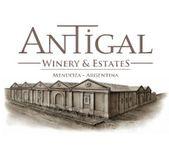 安缇加尔酒庄