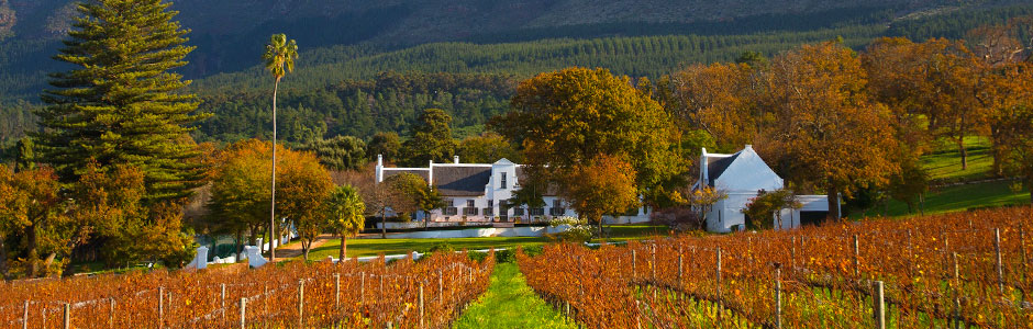 2014年南非葡萄收成预计下降4.7%