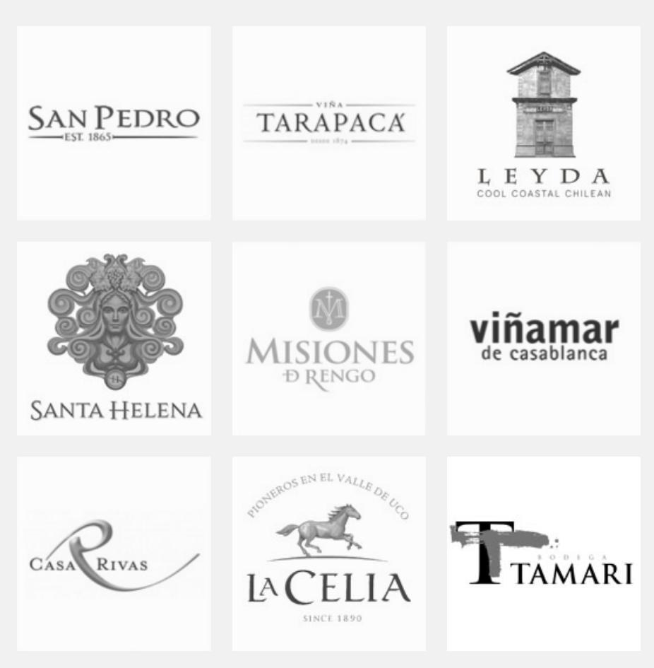 全球酒业巨头之VSPT集团