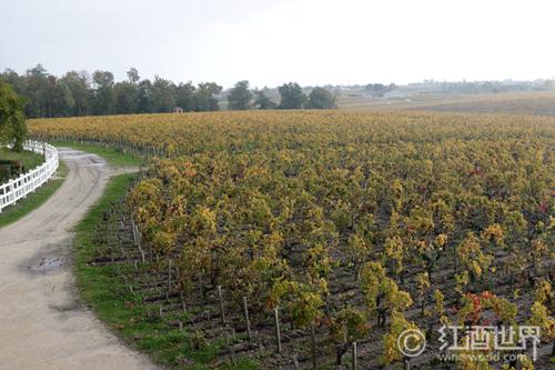 风土,法国葡萄酒命名之根源