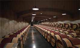 杜特城堡2016年份期酒发售,酒庄有史以来最佳年份?