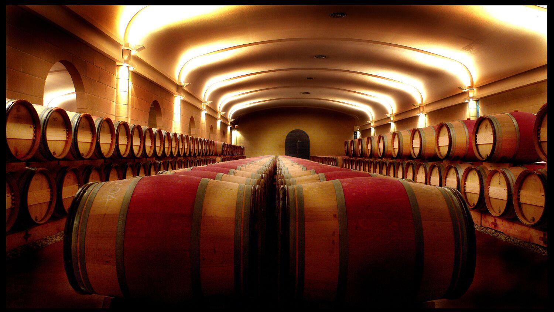 橡木桶或是葡萄酒苦味的根源