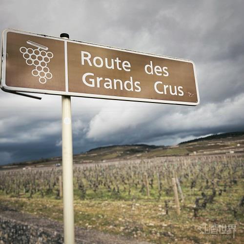 勃艮第6名庄拟联合打造特级园葡萄酒