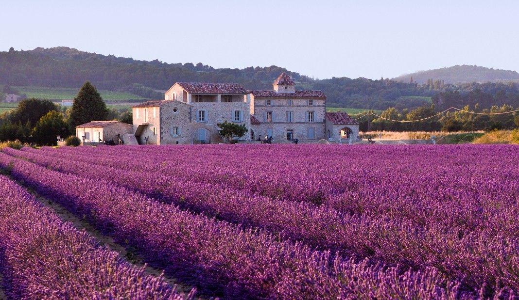 法国葡萄酒产区那么美,我想去看看(下)
