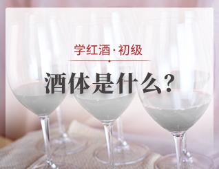酒体是什么?
