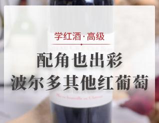 配角也出彩——波尔多其他红葡萄品种