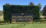 玛姆纳帕酒庄