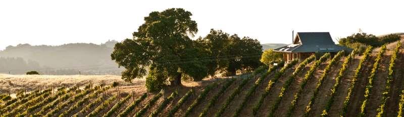 《葡萄酒观察家》2016百大名酒第8、第7名出炉!