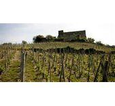 维也纳酒庄(Les Vins de Vienne)