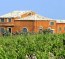 马卡尼酒庄Feudo Maccari