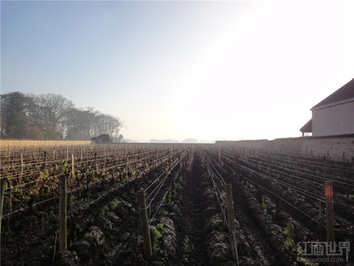 红酒世界勃艮第名庄探访之旅——瓦罗耶酒庄