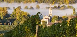 波尔多葡萄酒历史