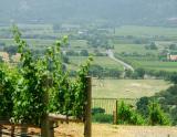 1992年份达拉·瓦勒玛雅干红葡萄酒