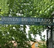 瓦拉多酒莊