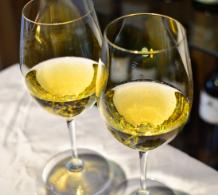 猜出葡萄酒的身份(一)
