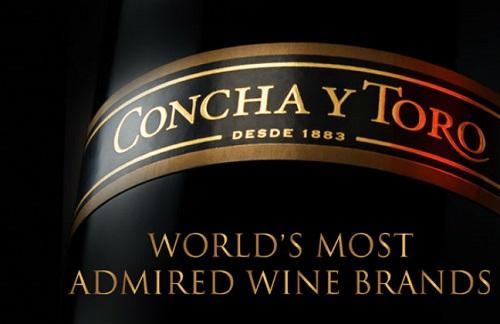 智利酒業巨頭:干露酒莊