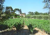 普拉多酒庄Chateau Pradeaux