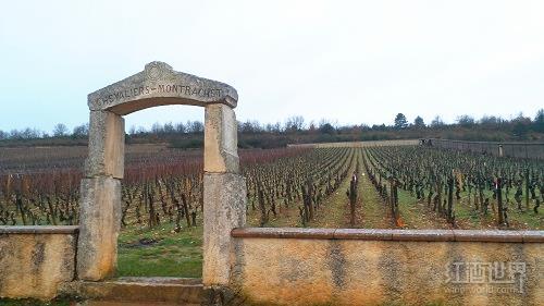 2005年份让-马克·皮洛酒庄(骑士-蒙哈榭特级园)白葡萄酒
