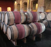 现代波尔多葡萄酒的酿造