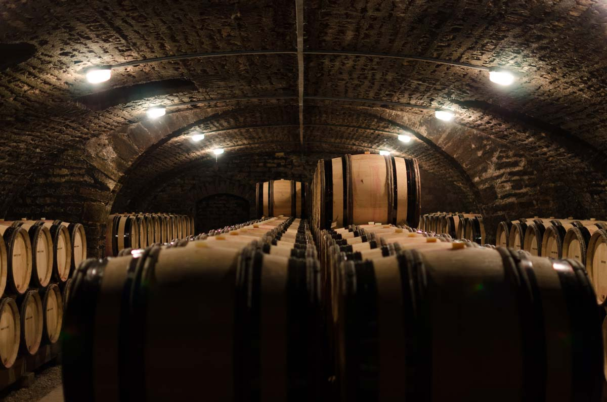浅谈酵母对葡萄酒风味的影响