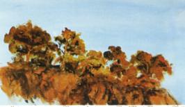 2004年份木桐酒标 查尔斯王子画作被选用