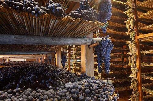 意大利最受好评的十大酒款