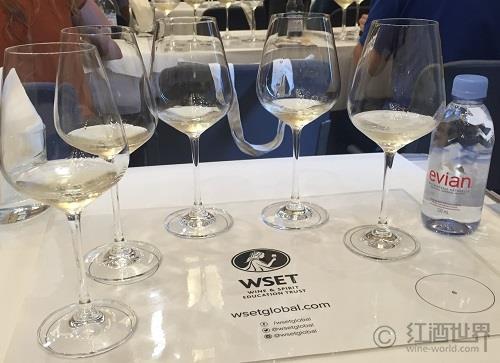 WSET葡萄酒讲师的奋斗(二)