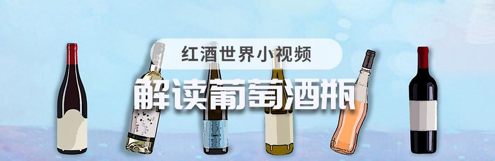 解讀葡萄酒瓶