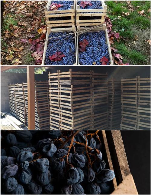 意大利东北酒王,风靡欧美的阿玛罗尼是如何酿成的?