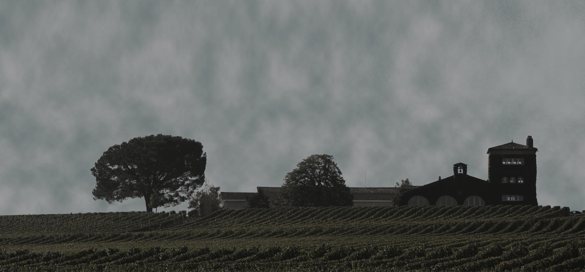 波尔多1855列级庄分布图之苏玳&巴萨克
