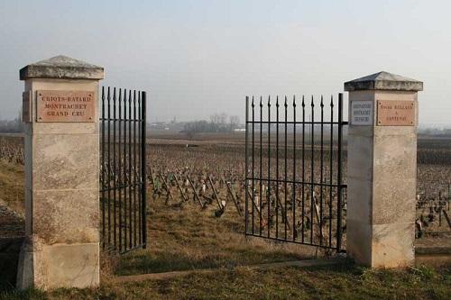 霞多丽的伊甸园——夏山-蒙哈榭优质葡萄园概览