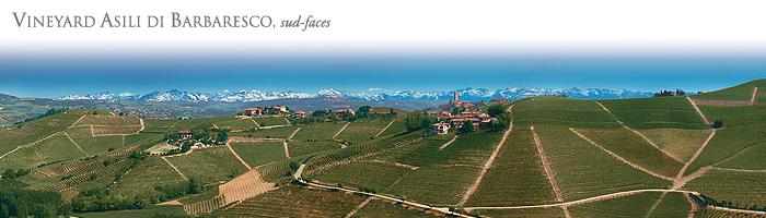 意大利名庄再度放弃巴罗洛,2010年酒出局