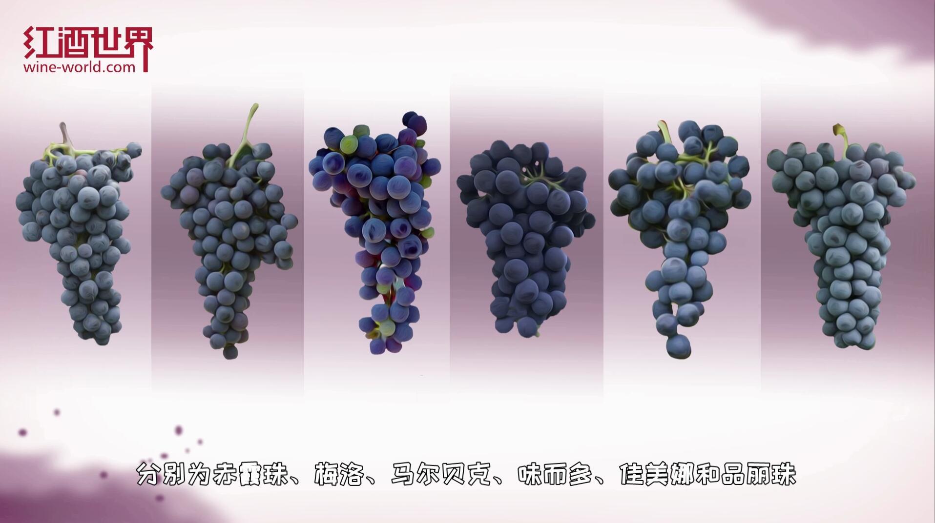 """法國葡萄酒里的經典""""配方"""""""