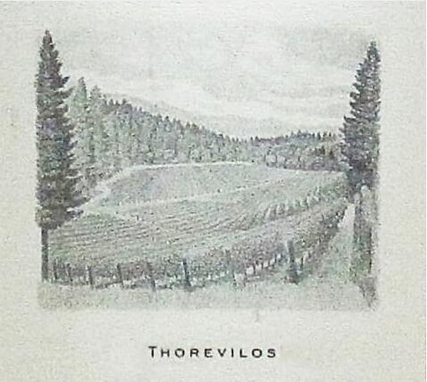 盘点加利福尼亚州最贵的10款葡萄酒