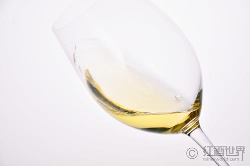 葡萄品种鼻祖白高维斯免于灭绝