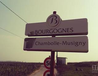 了解法国葡萄酒的AOC制度