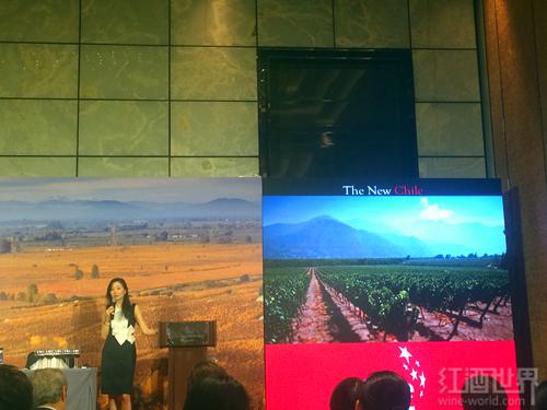 红酒世界葡萄酒顾问李志延大师班,走近智利葡萄酒