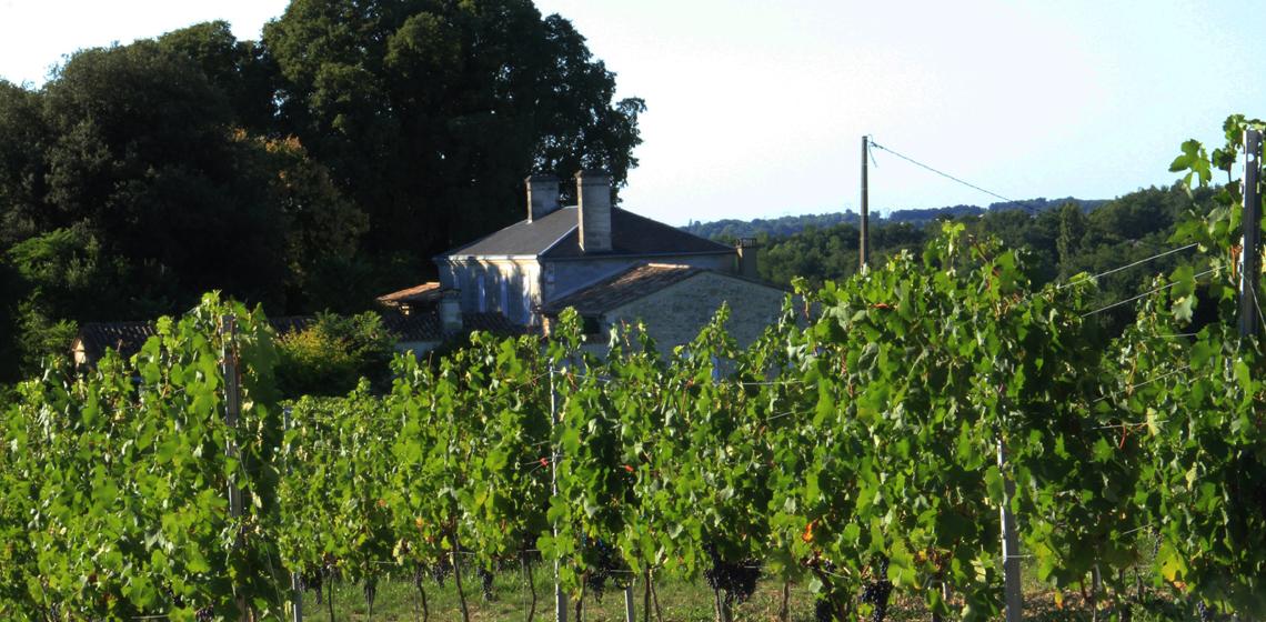 波尔多酒庄:格拉夫品酒记录