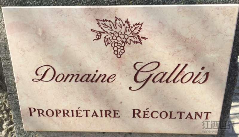 勃艮第之旅中间站:红酒世界实地解读多米尼克·加卢瓦酒庄