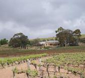 格林诺克酒庄Greenock Creek Vineyard