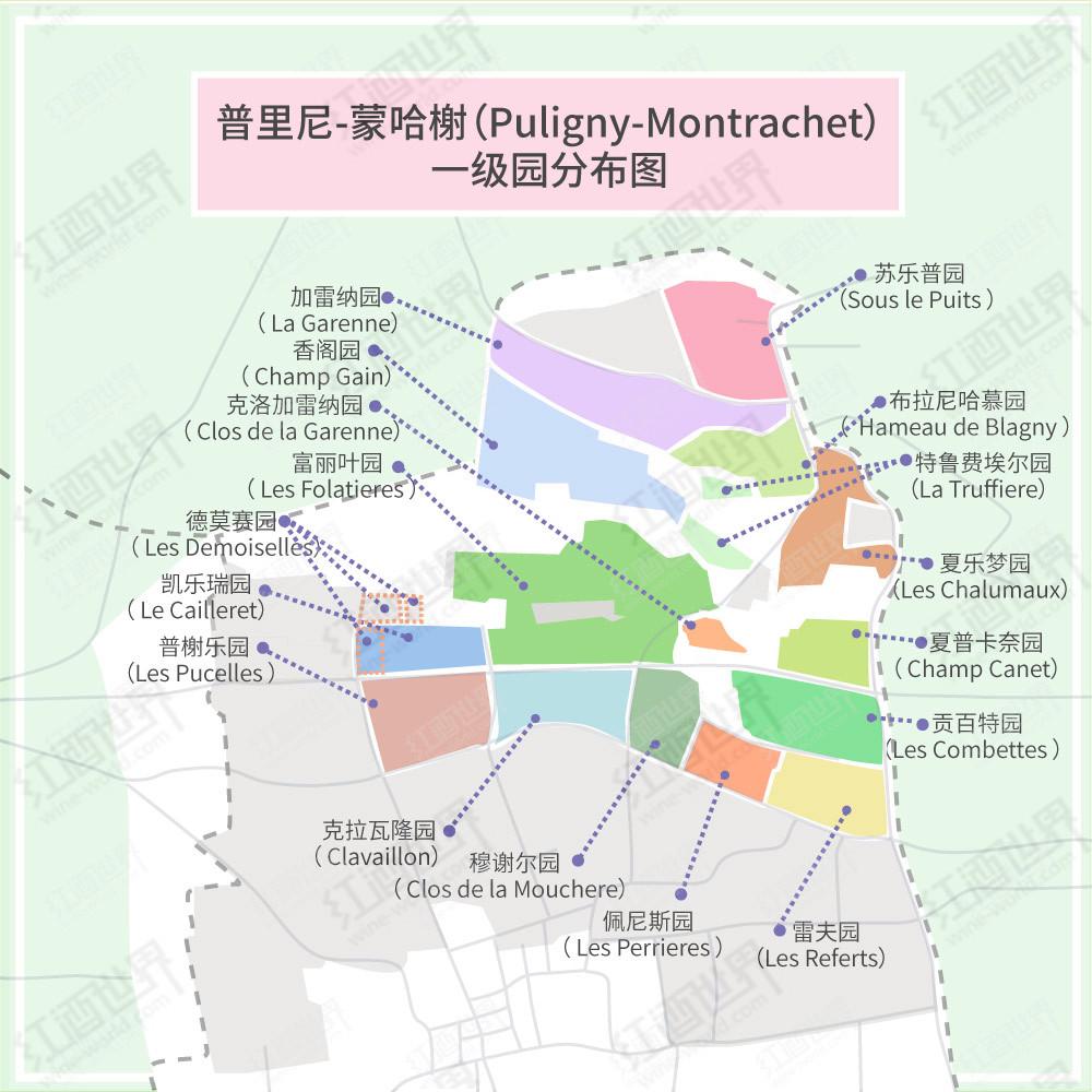 霞多丽的天堂——普里尼-蒙哈榭村优质葡萄园