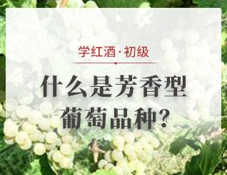 什么是芳香型葡萄品種?