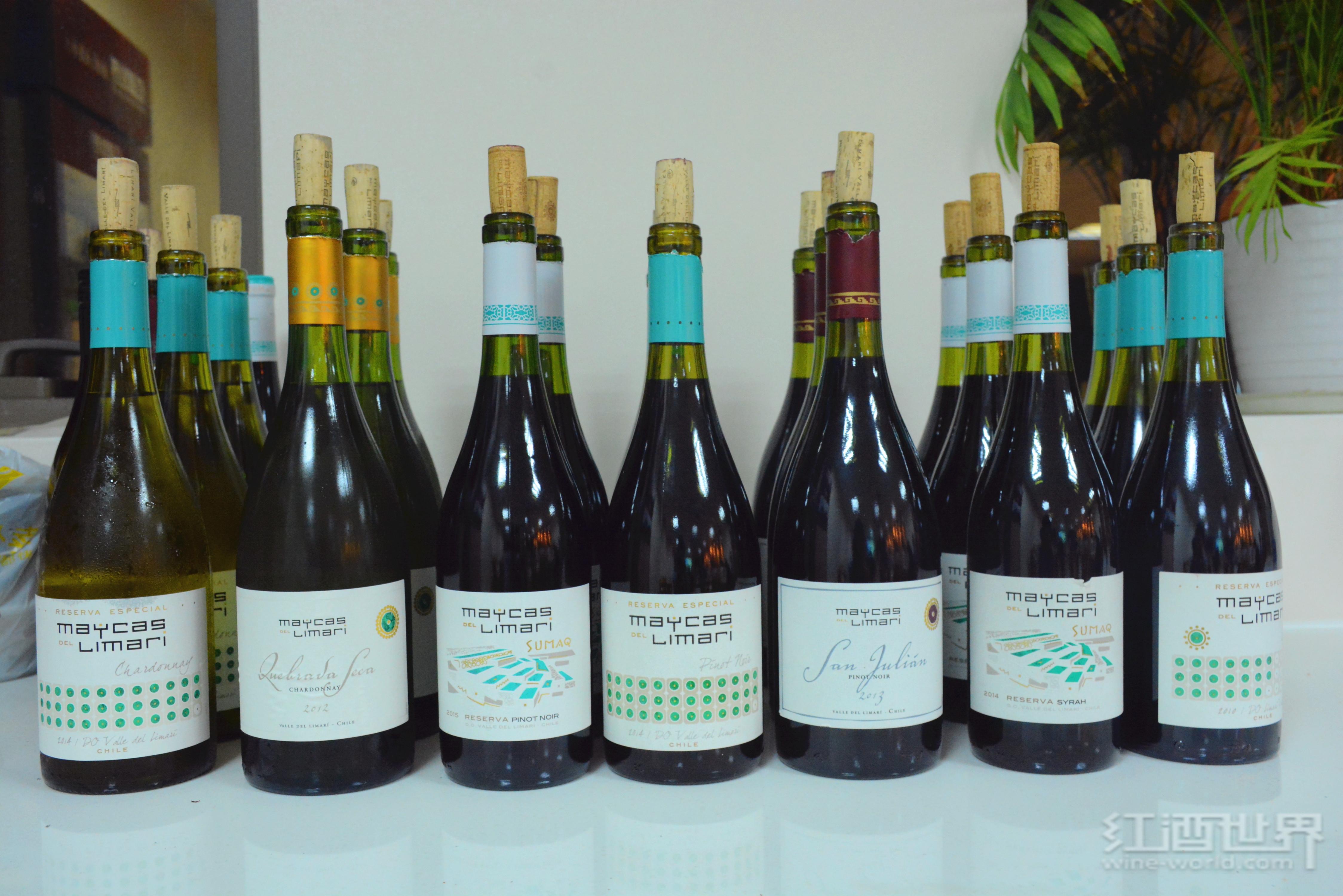 如何成为一名葡萄酒大师?