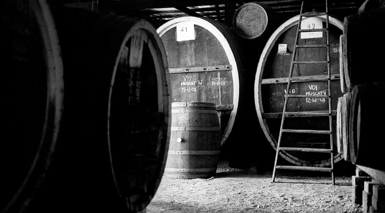 何为加强型麝香葡萄酒?