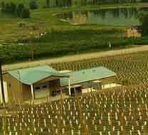 独行者酒庄Maverick Estate Winery