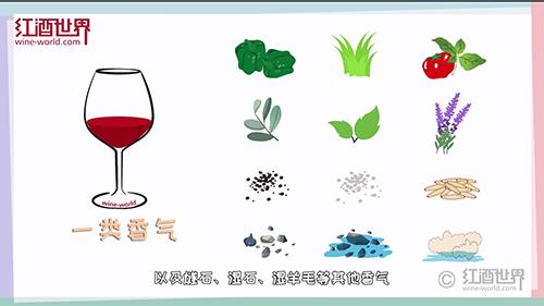 8个葡萄酒常识:敲开葡萄酒世界神秘之门